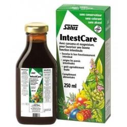 INTESTCARE Curcuma-Magnésium