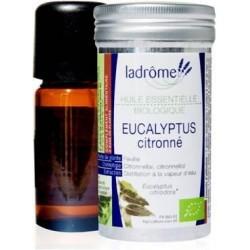 HUILE ESSENTIELLE Bio Eucalyptus Citronné