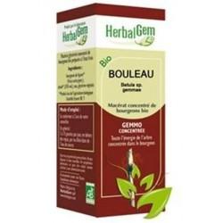 GEMMOBASE Bouleau