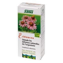 SUC DE PLANTES Echinacea