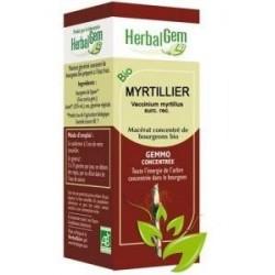 GEMMOBASE Myrtillier