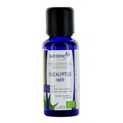 HUILE ESSENTIELLE Bio Eucalyptus radiata