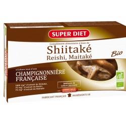 SHIITAKE + Bio