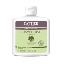 SHAMPOOING Cheveux Gras à l'Argile Verte
