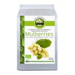 MULBERRIES Mûres Blanches Bio