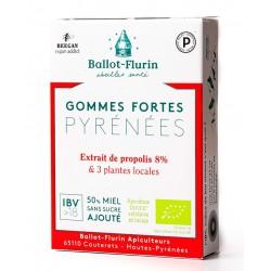 GOMMES FORTE des Pyrénées