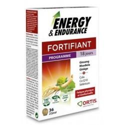 ENERGY ENDURANCE