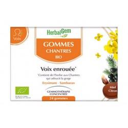 GOMMES DES CHANTRES Bio
