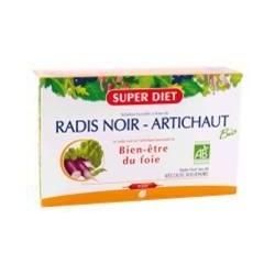 RADIS NOIR - ARTICHAUT Bio